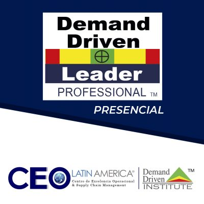 Programa Demand Driven Leader